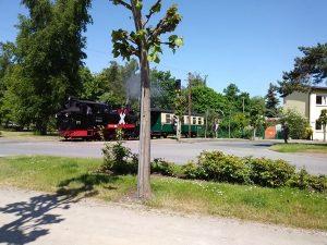 Die Dampflok in Rügen auf ihrer Fahrt über die Insel