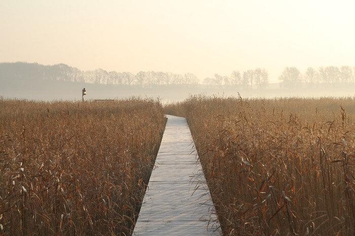 Bootssteg und Ausblick im November 2011